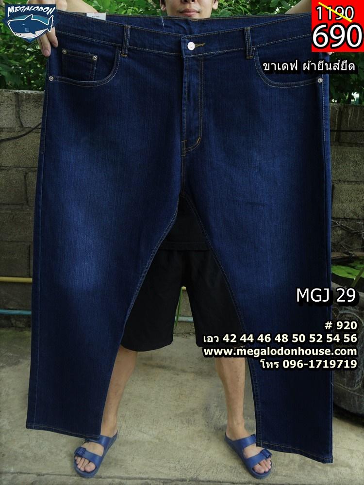 mgj29-1